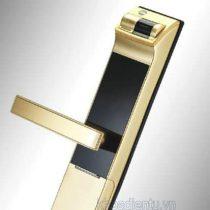 yale-4109-gold