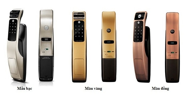 khoa-yale-YMG-40